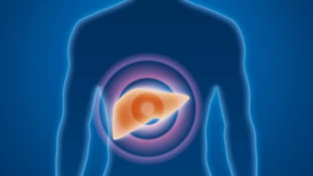 fare pillole per la dieta danneggiano il fegato