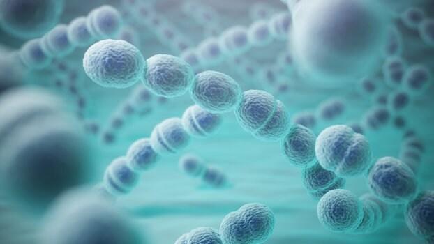 Infezioni da Streptococco: quali sono? Come combatterle?